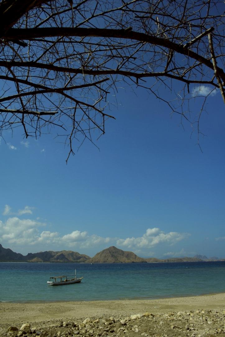 pantai di Rinca