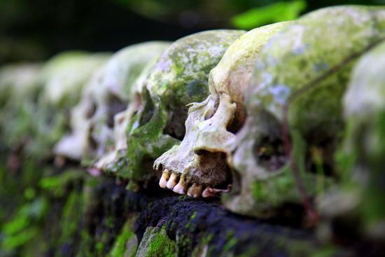 Trunyan Skulls