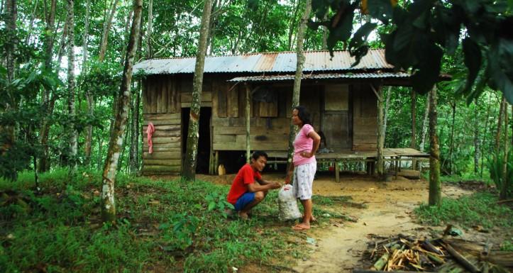 ketemu rumah beginian nih sekitar 1 km dari hutan