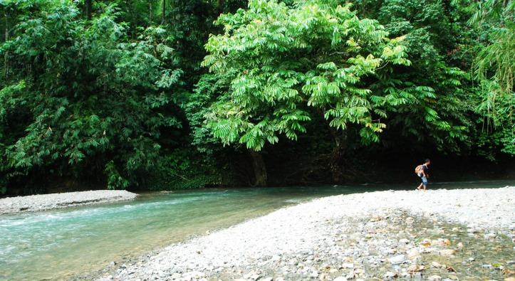 sungai beginian tiba2 nongol aja di dalam hutan. byurrrrr