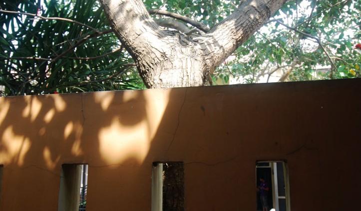 Pagar yang katanya mulai rusak karena akar pohon