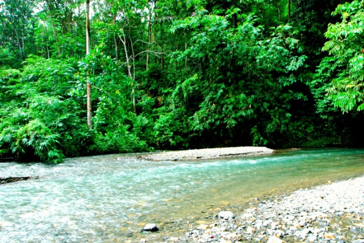 Sungai Landak di Musim hujan