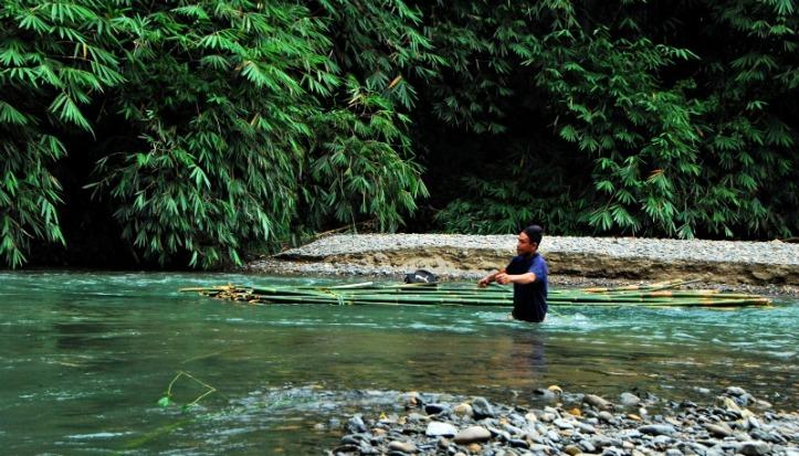 Si bapak pembawa bambu
