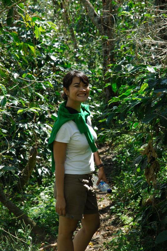 Disalah satu perkebunan kopi di Bajawa