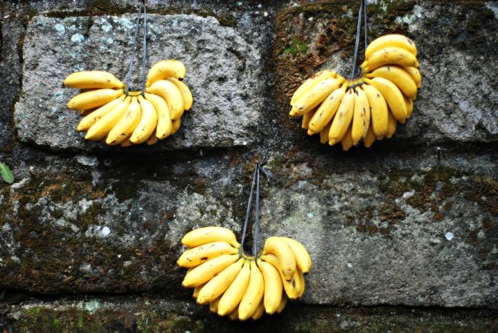 pisang-pisang di dinding.