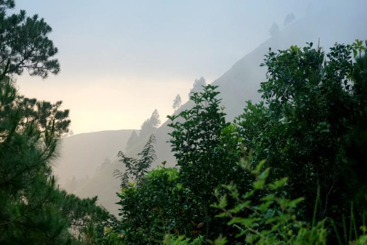 Sekitaran bukit