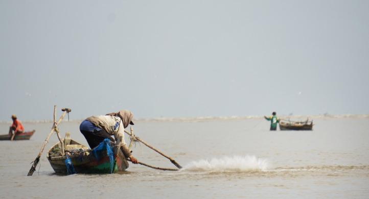 Salah satu cara menangkap ikan dengan memukul2 permukaan laut untuk membuat ikan takut