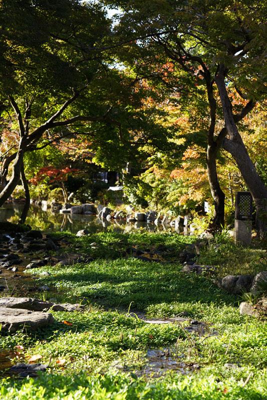 Saya sempet lama banget duduk-duduk di deket taman ini dan lama-lama jadi mikir jangan-jangan peri-peri dan kurcaci itu beneran ada. Parah nih, ngayalnya haha. Pantesan komik Jepang luar biasa ngayalnya ya.