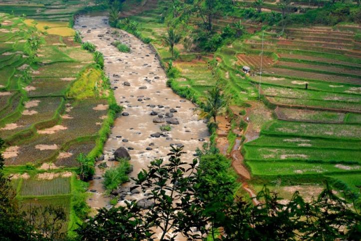 Kampung Naga Jawa Barat
