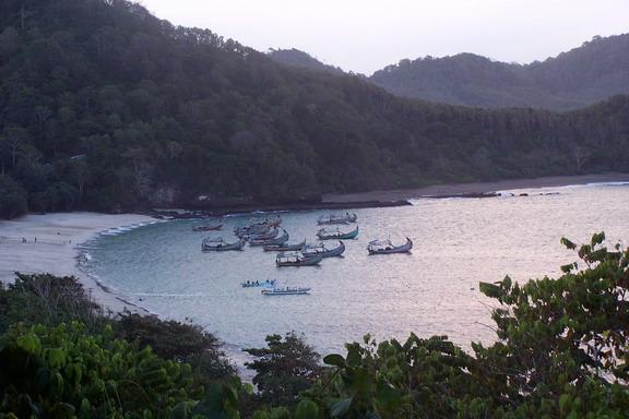 Tanjungj Papuma
