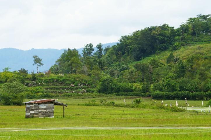 Pulau Samosir - Lake Toba