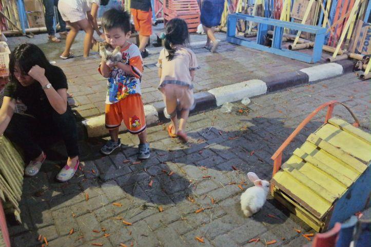 Ada tempat main sama kelinci tapi kasian ah.. kelincinya kayak yang ngantuk gitu Asia Mega Mas Medan
