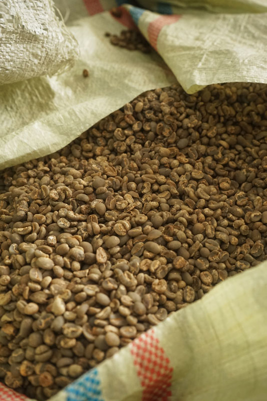 Coffee Tour Takengon Gayo - Aceh Tengah