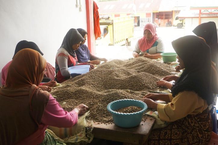 Coffee Tour Takengon Gayo - Aceh Tengah Ibu-ibu atau remaja biasanya bekerja berkelompok. Mereka ramah banget dan suka sekali bercerita. Bisa seharian deh :)