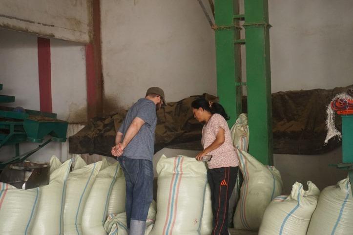 Coffee Tour Takengon Gayo - Aceh Tengah Matt dan ibu Rahma melihat biji kopi yang sudah selesai dipilih