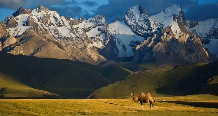 www.remotelands.com