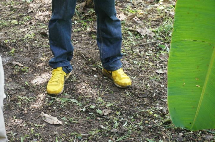 Sepatu kuning hehe