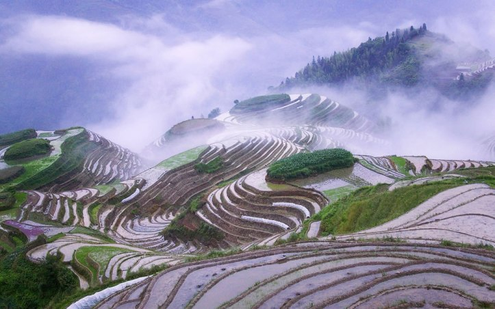 www.lovethesepics.com Rice terraces in early morning mist, Guangxi Province, China