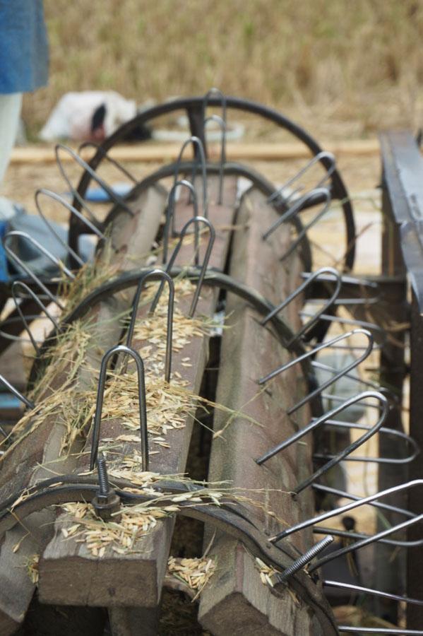 Alat untuk memisahkan padi dengan batangnya