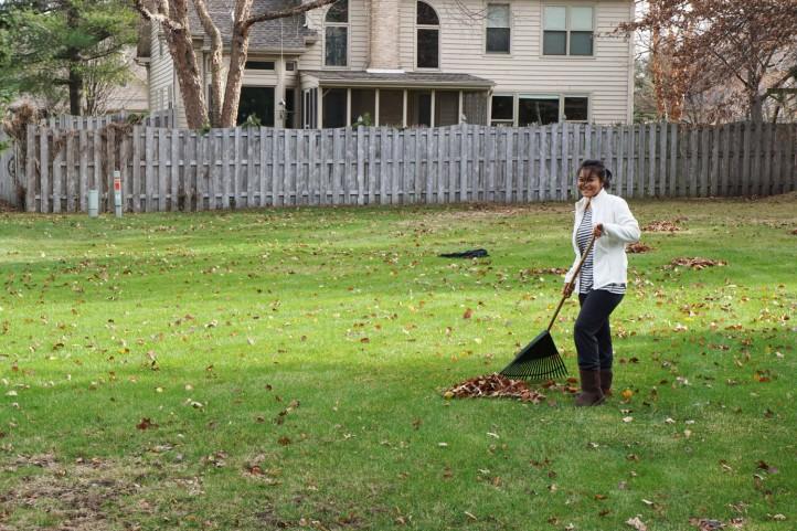 winter rasa fall di US tahun 2015