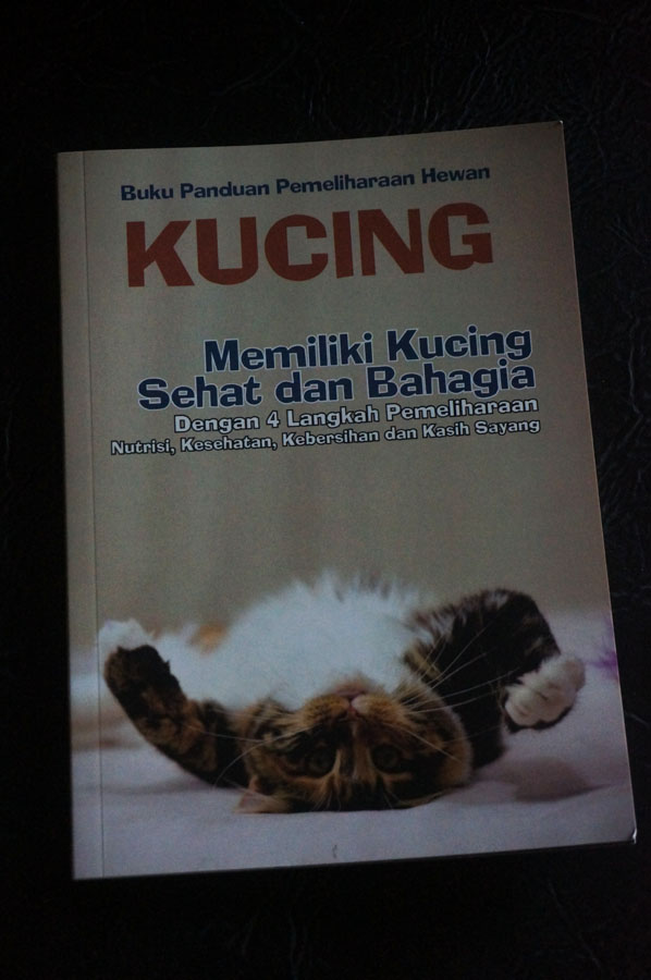buku tentang kucing