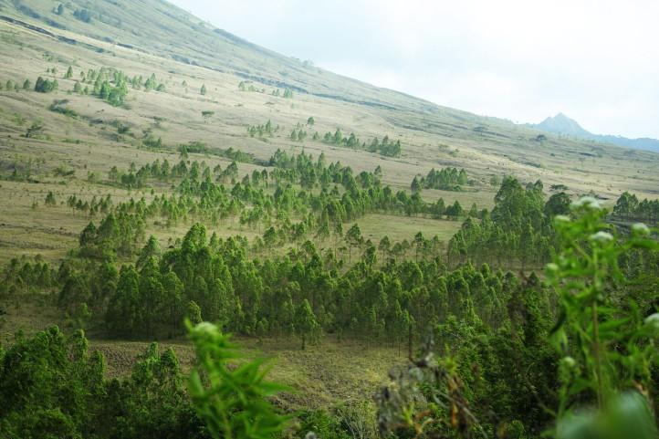 Kampung Bena NTT 3 - Gunung Inarie Flores