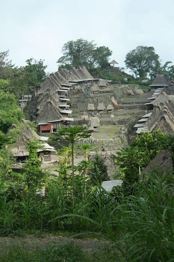 Kampung Bena NTT