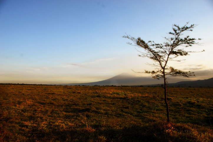 Taman Nasional Baluran Indonesia