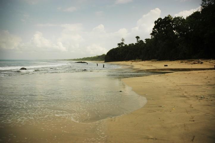 Sukamade Jawa Timur 16
