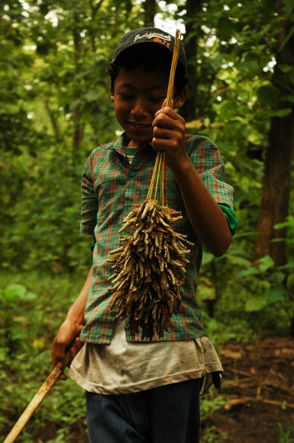 Penjual Belalang dipinggir hutan