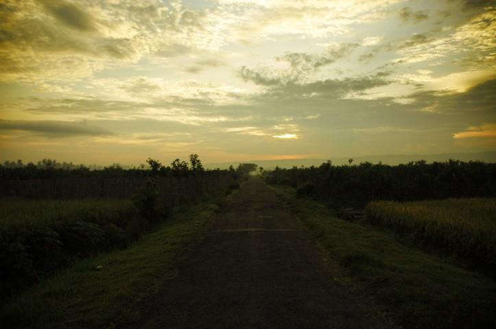 Sukamade Jawa Timur 3