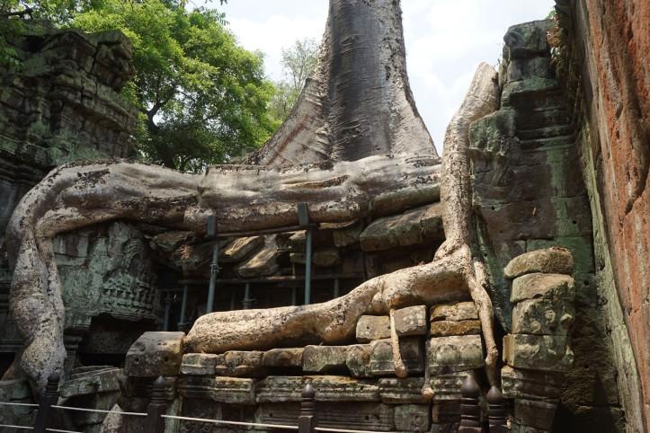 Ta Phrom Siem Reap