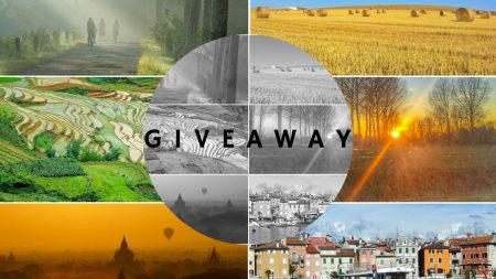 cover-giveaway noni/febby